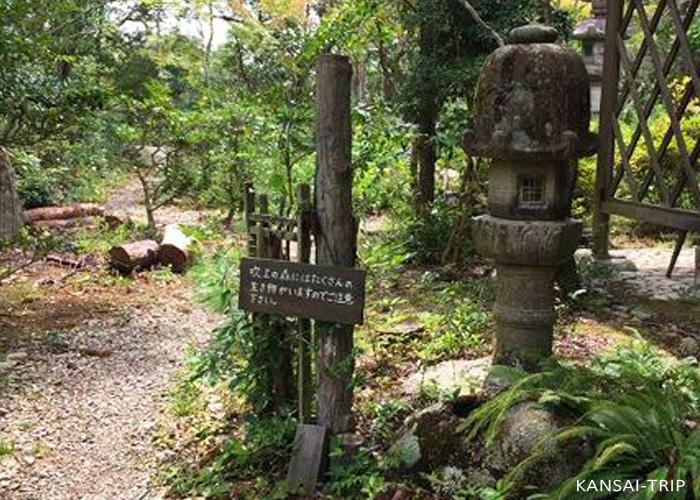 吹上の森 三田